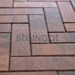 "Тротуарная плитка ""Паркет"" Color Mix 60 мм ''STEINGOT''"