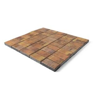 """Тротуарная плитка Прямоугольник, """"Прайд"""" (40 мм) 200x100 ''BRAER''"""