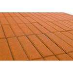 Тротуарная плитка Прямоугольник, Оранжевый (60 мм) 200x50 ''BRAER''